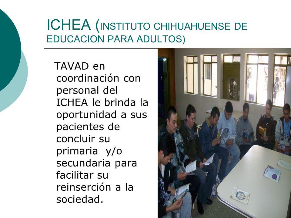 ICHEA (INSTITUTO CHIHUAHUENSE DE EDUCACION PARA ADULTOS)
