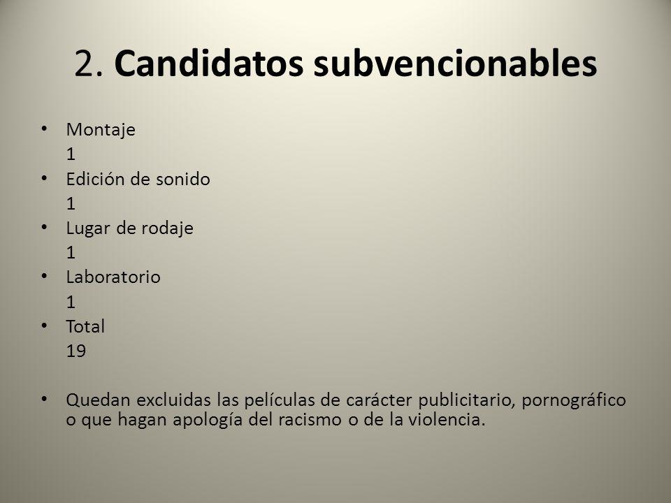 2. Candidatos subvencionables