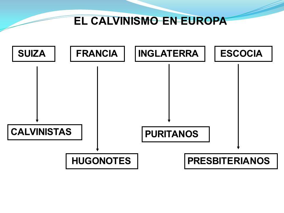 EL CALVINISMO EN EUROPA