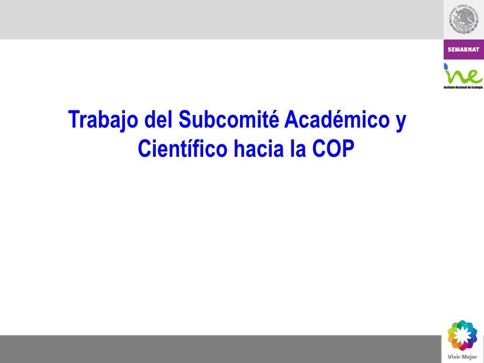 Trabajo del Subcomité Académico y Científico hacia la COP