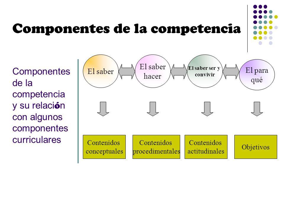 Componentes de la competencia