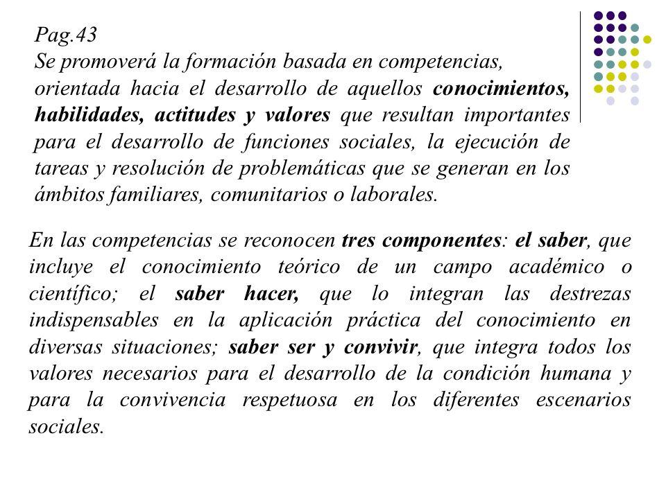Pag.43 Se promoverá la formación basada en competencias,