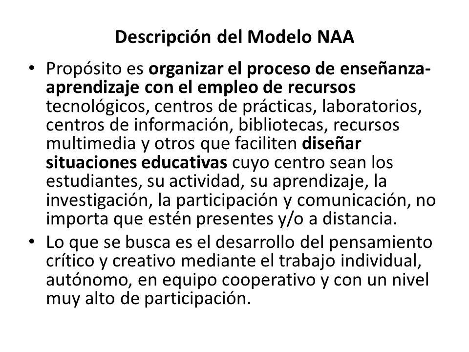 Descripción del Modelo NAA