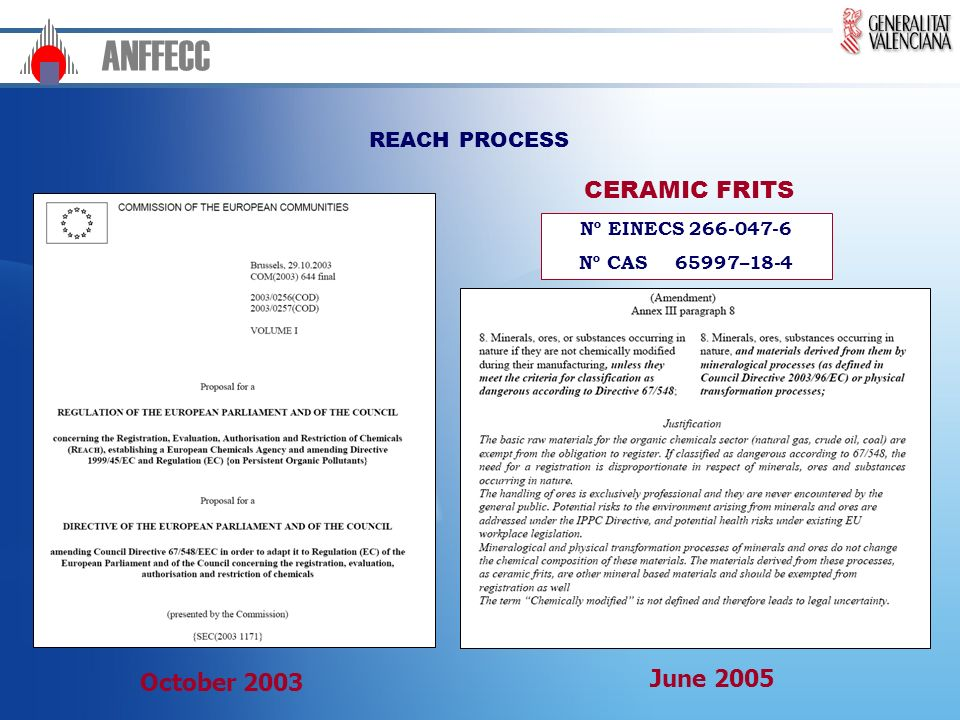 ANFFECC CERAMIC FRITS June 2005 October 2003 REACH PROCESS