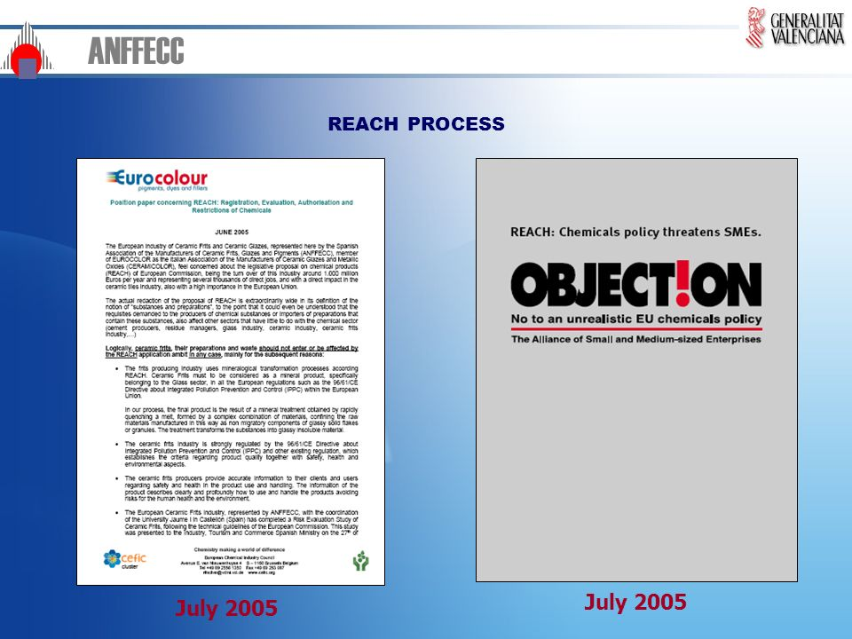ANFFECC REACH PROCESS July 2005 July 2005