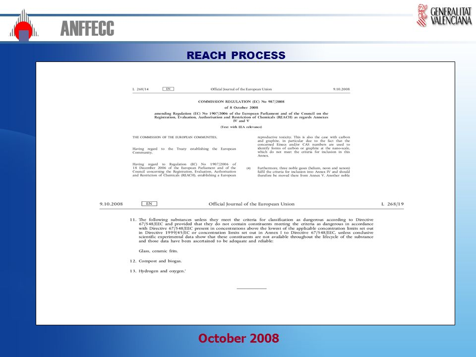 ANFFECC REACH PROCESS October 2008