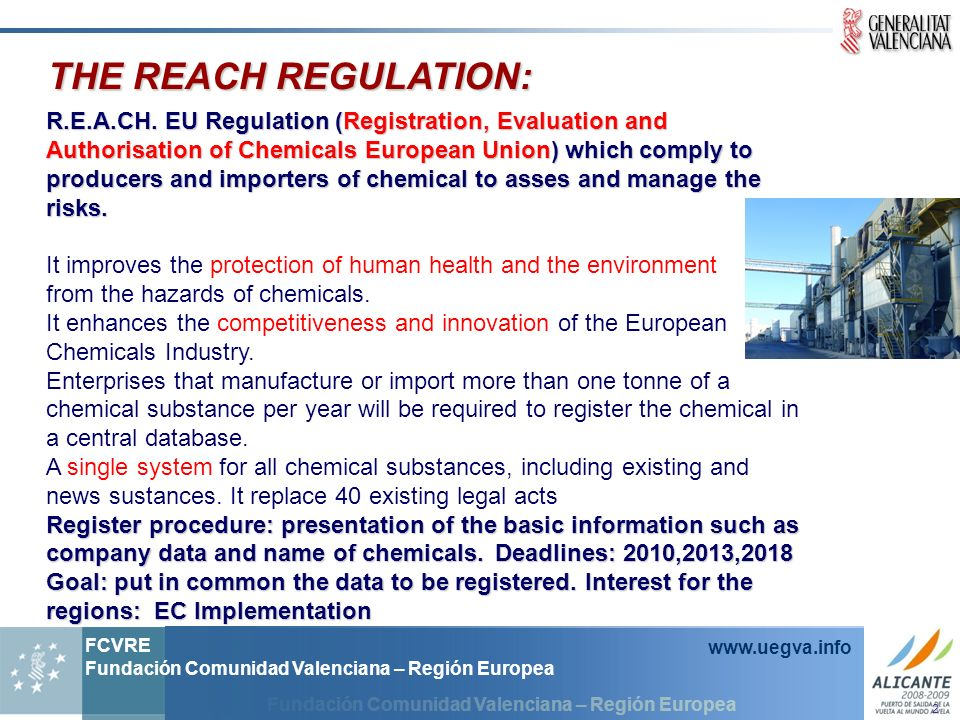 THE REACH REGULATION: