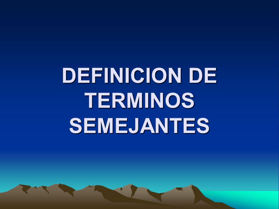 DEFINICION DE TERMINOS SEMEJANTES