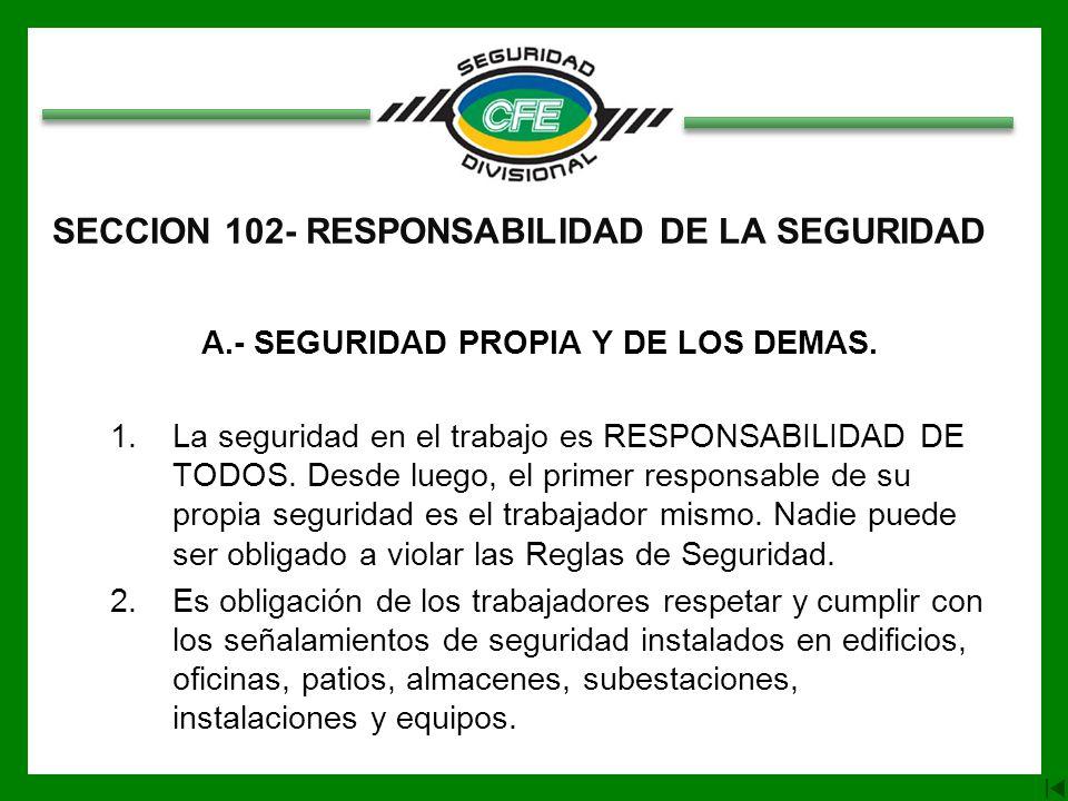 SECCION 102- RESPONSABILIDAD DE LA SEGURIDAD