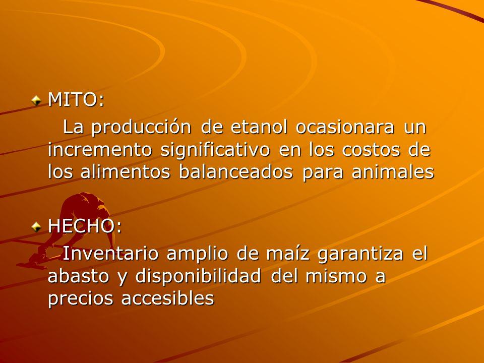 MITO: La producción de etanol ocasionara un incremento significativo en los costos de los alimentos balanceados para animales.