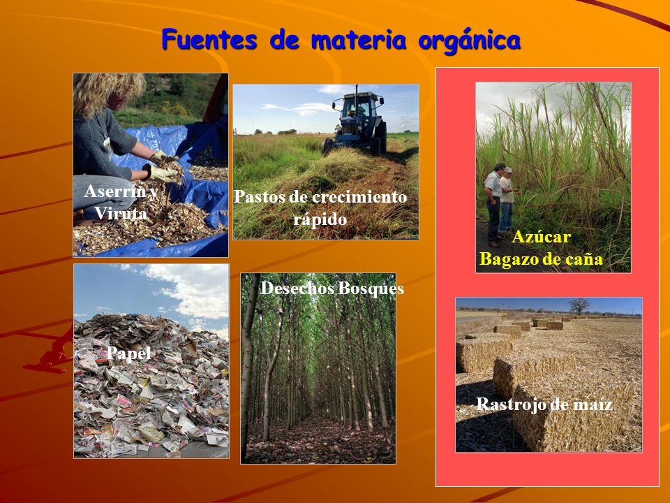Fuentes de materia orgánica