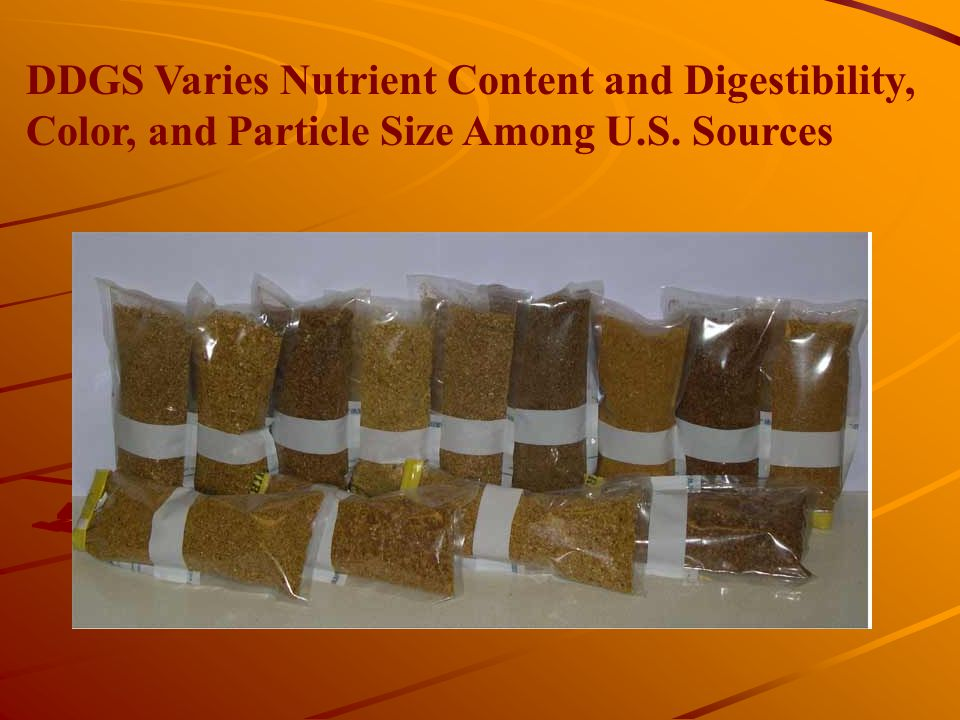 DDGS Varies Nutrient Content and Digestibility, Color, and Particle Size Among U.S. Sources