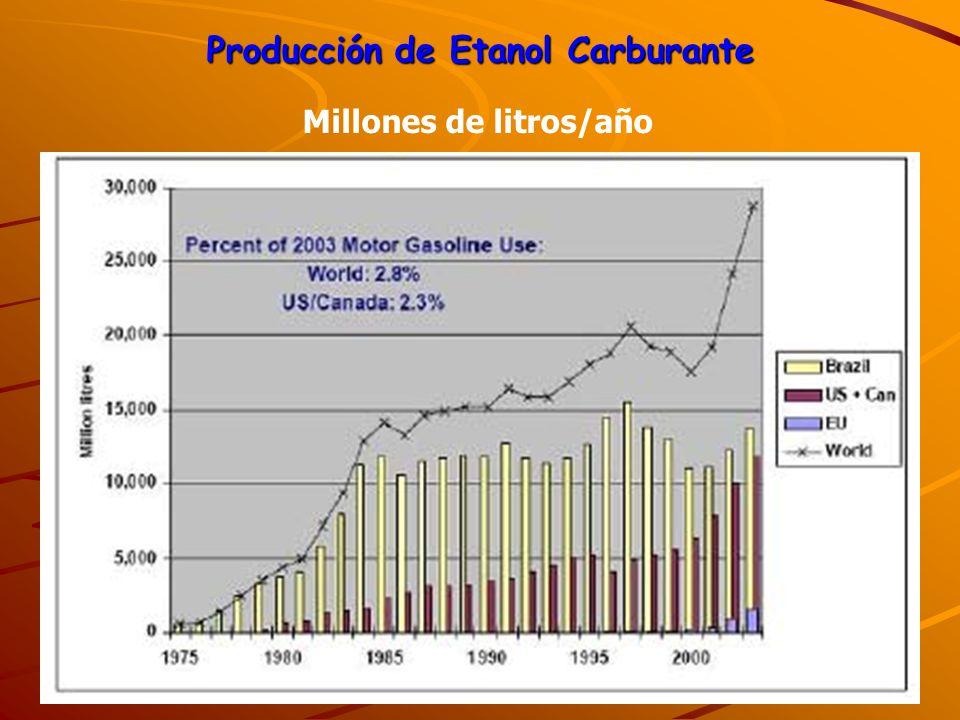 Producción de Etanol Carburante