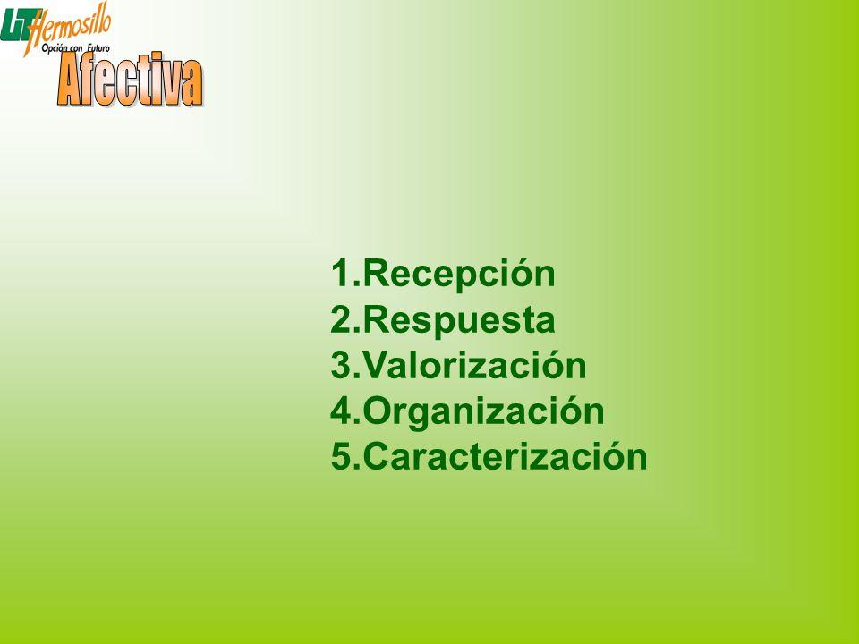 Afectiva Recepción Respuesta Valorización Organización Caracterización