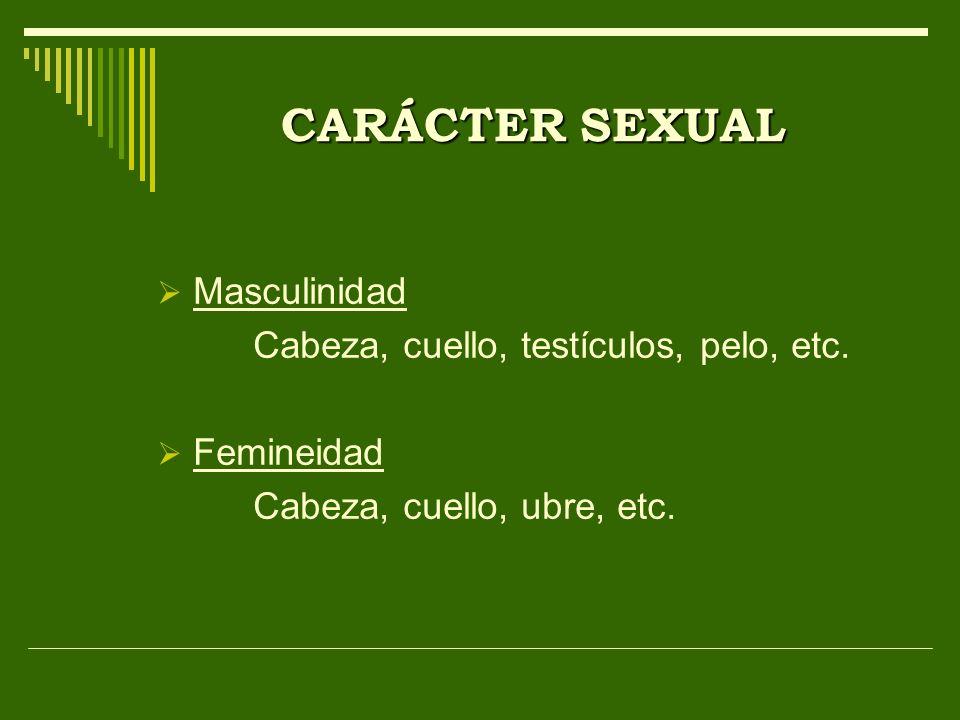 CARÁCTER SEXUAL Masculinidad Cabeza, cuello, testículos, pelo, etc.