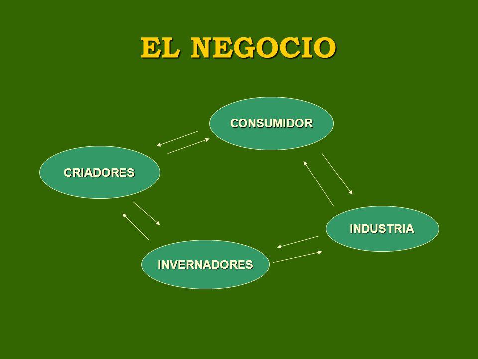 EL NEGOCIO CONSUMIDOR CRIADORES INDUSTRIA INVERNADORES