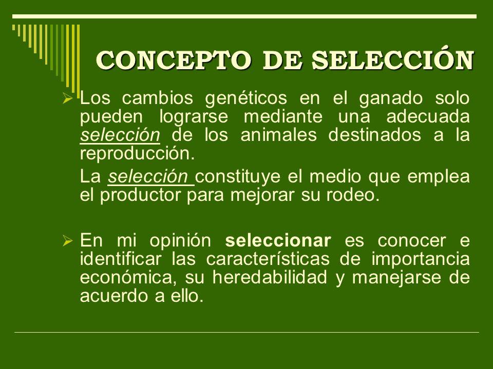 CONCEPTO DE SELECCIÓN