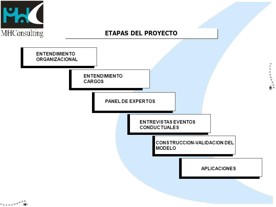 ETAPAS DEL PROYECTO ENTENDIMIENTO ORGANIZACIONAL ENTENDIMIENTO CARGOS
