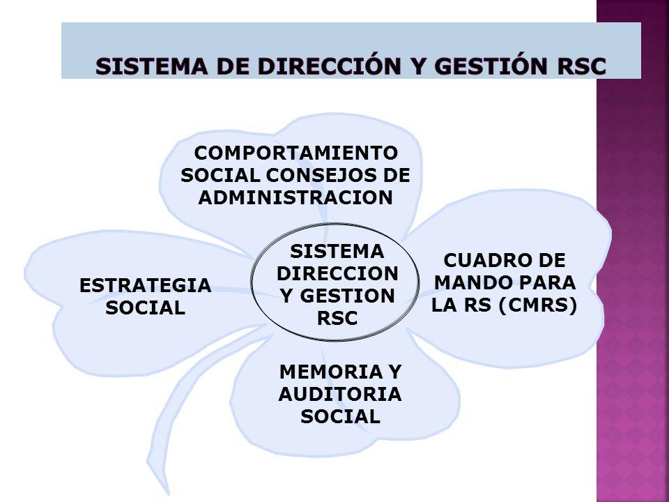Sistema de Dirección y Gestión RSC