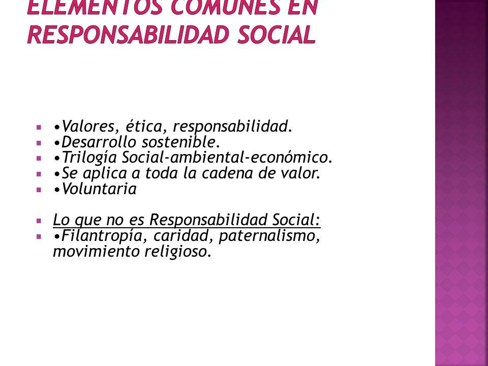 ELEMENTOS COMUNES EN RESPONSABILIDAD SOCIAL