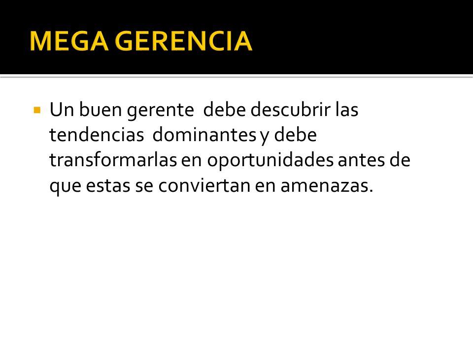MEGA GERENCIA