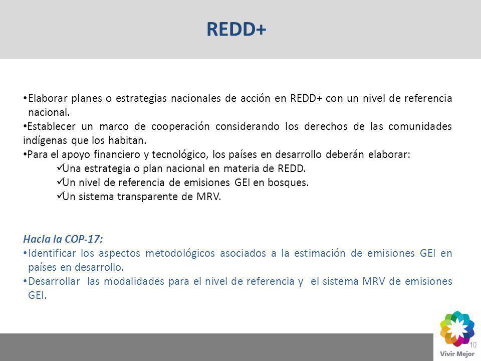 REDD+ Elaborar planes o estrategias nacionales de acción en REDD+ con un nivel de referencia nacional.