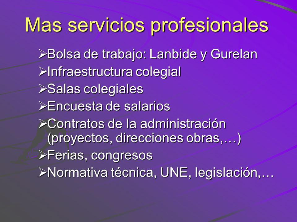 Mas servicios profesionales