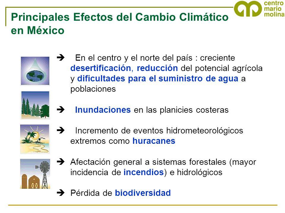 Principales Efectos del Cambio Climático en México