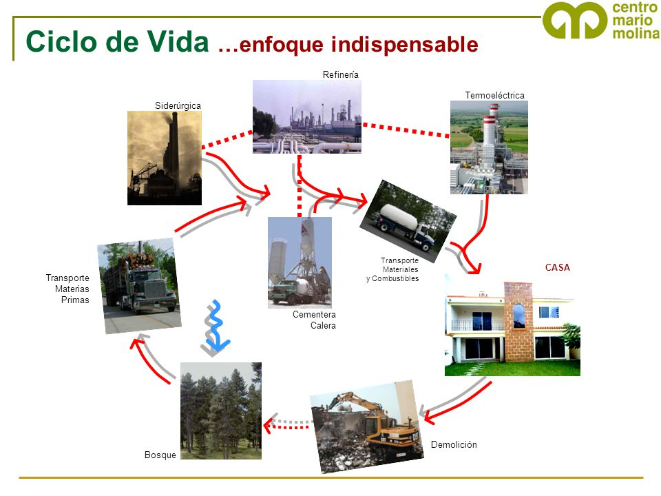 Ciclo de Vida …enfoque indispensable