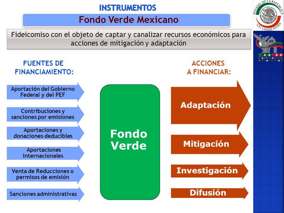 Fondo Verde Fondo Verde Mexicano Instrumentos Adaptación Mitigación