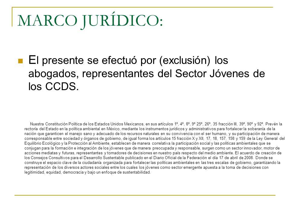 MARCO JURÍDICO: El presente se efectuó por (exclusión) los abogados, representantes del Sector Jóvenes de los CCDS.