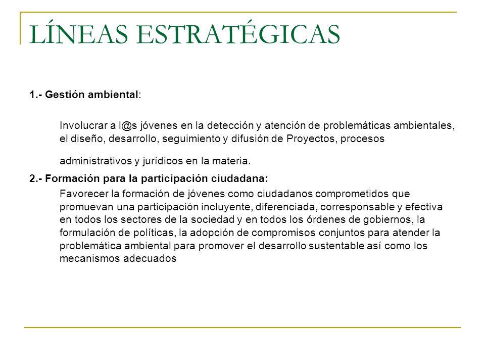 LÍNEAS ESTRATÉGICAS 1.- Gestión ambiental: