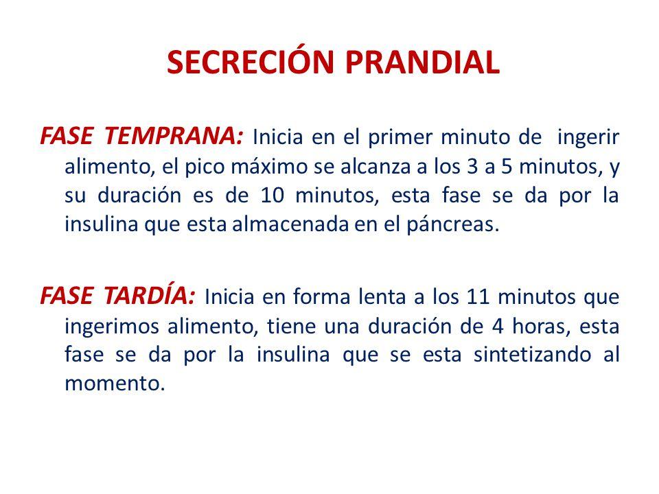 SECRECIÓN PRANDIAL