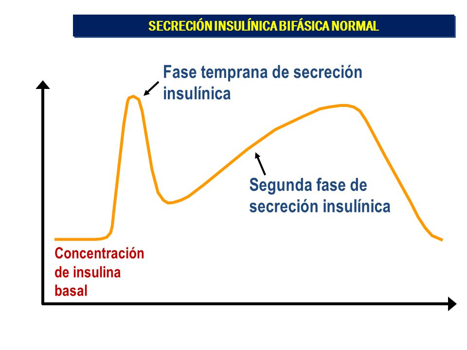 SECRECIÓN INSULÍNICA BIFÁSICA NORMAL