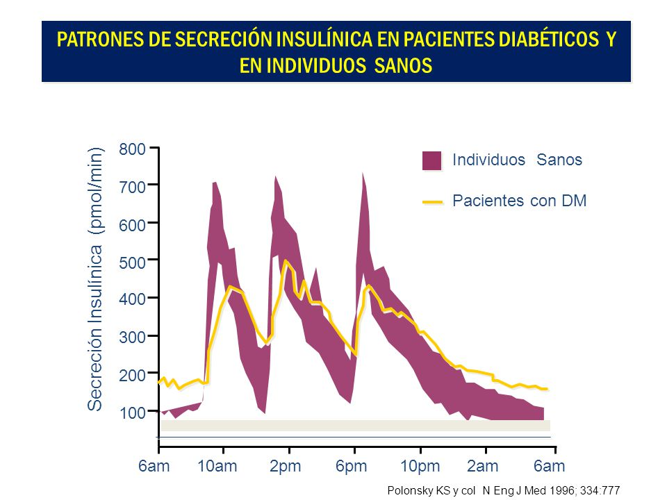 Patrones de Secreción Insulínica en Pacientes Diabéticos y en Individuos Sanos