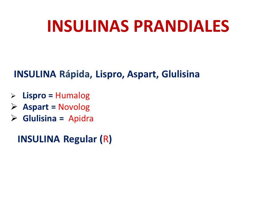 INSULINAS PRANDIALES INSULINA Regular (R) Aspart = Novolog