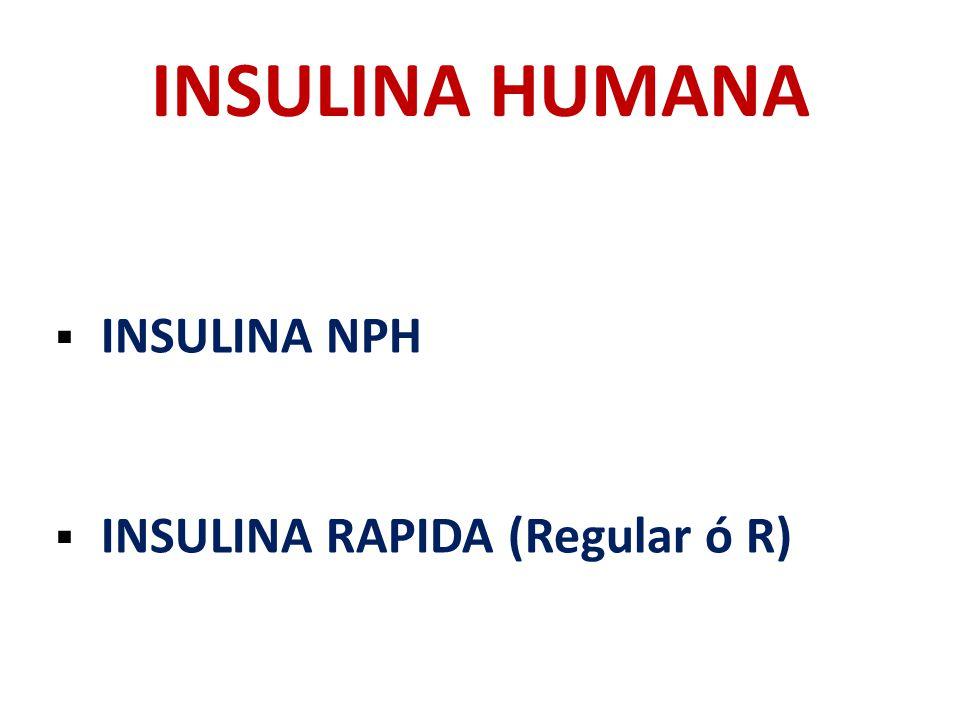 INSULINA HUMANA INSULINA NPH INSULINA RAPIDA (Regular ó R)