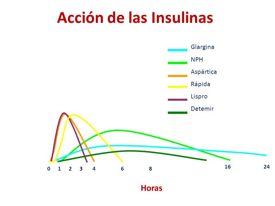 Acción de las Insulinas