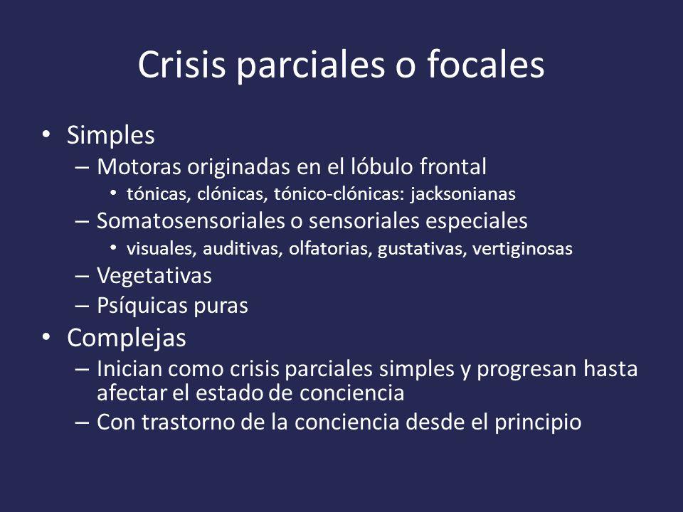Crisis parciales o focales