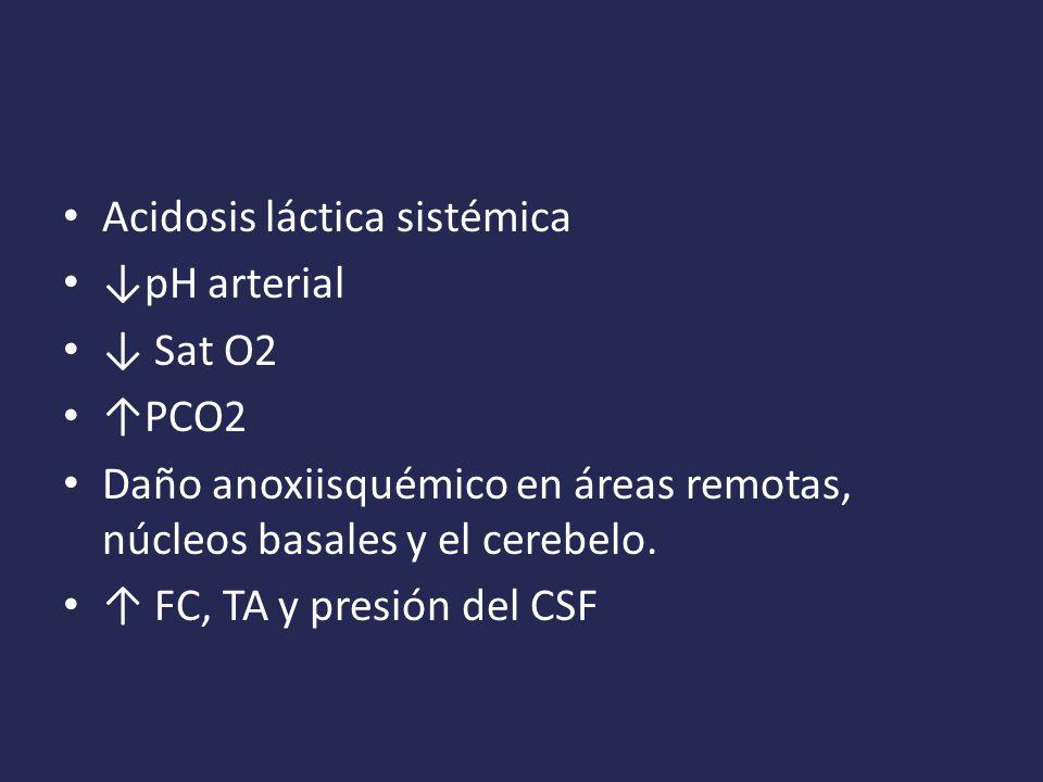 Acidosis láctica sistémica