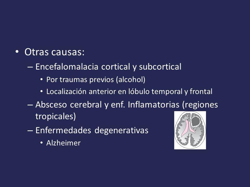 Otras causas: Encefalomalacia cortical y subcortical