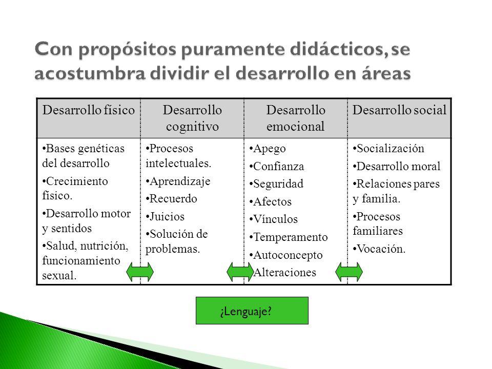 Con propósitos puramente didácticos, se acostumbra dividir el desarrollo en áreas