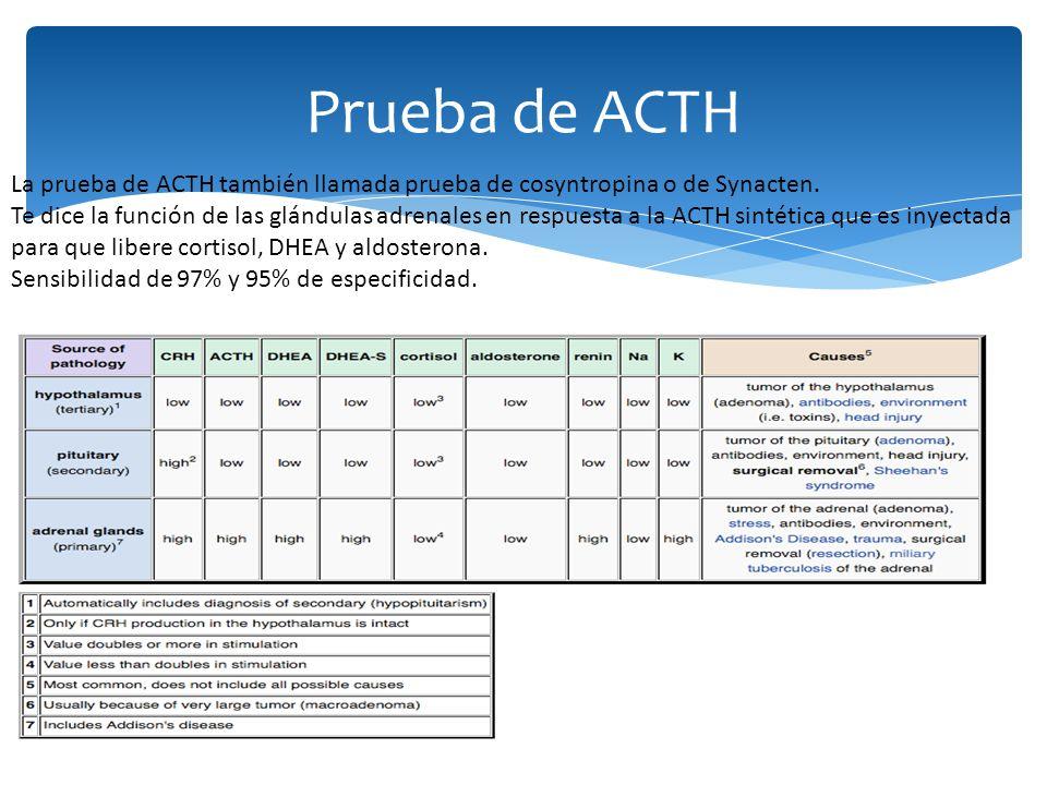 Prueba de ACTH La prueba de ACTH también llamada prueba de cosyntropina o de Synacten.