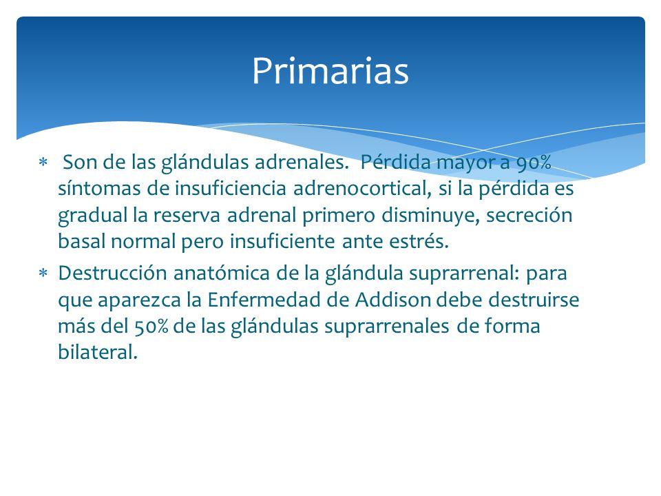 Primarias
