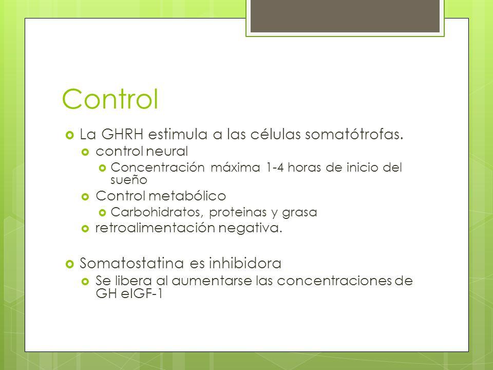 Control La GHRH estimula a las células somatótrofas.