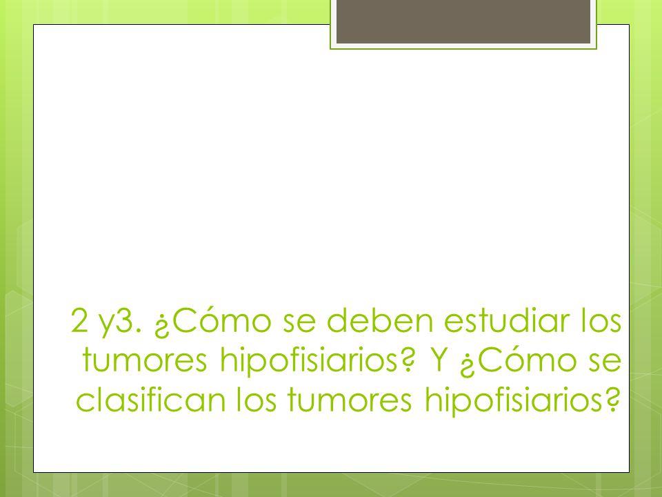 2 y3. ¿Cómo se deben estudiar los tumores hipofisiarios