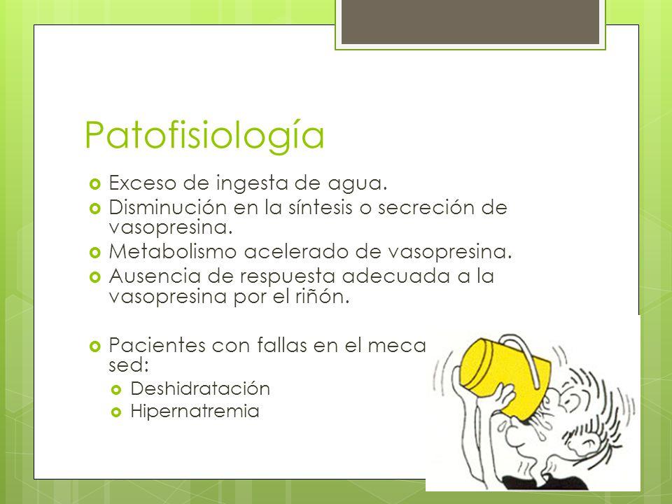 Patofisiología Exceso de ingesta de agua.