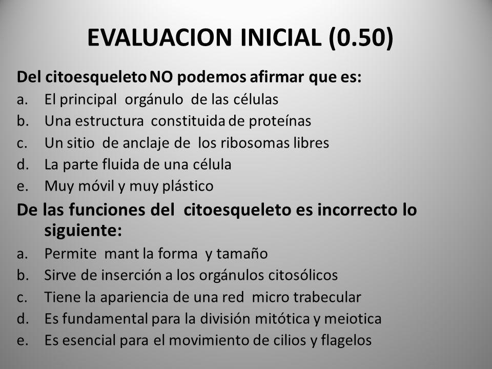 EVALUACION INICIAL (0.50)Del citoesqueleto NO podemos afirmar que es: El principal orgánulo de las células.