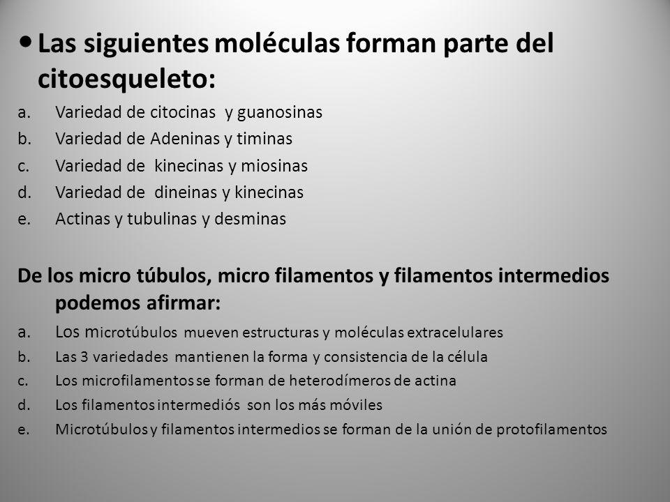 Las siguientes moléculas forman parte del citoesqueleto: