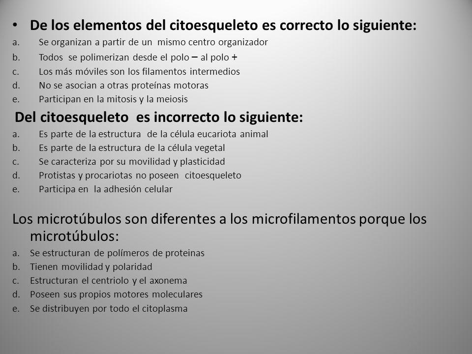 De los elementos del citoesqueleto es correcto lo siguiente: